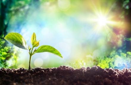 RIVALTA - Agli ecovolontari un contributo dalla Città metropolitana