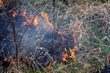 VINOVO - Denunciato per aver bruciato rifiuti di potature