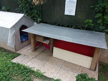 NICHELINO - Per tutelare le colonie feline, ecco i manifesti lungo la città