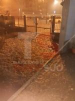 TROFARELLO - Bomba dacqua nella notte: il forte vento sradica il tetto di una casa - VIDEO - immagine 17