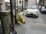 MONCALIERI - Tra i rifiuti non raccolti in via Santa Croce, anche la carcassa di un cane - immagine 1