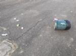 ORBASSANO - Passano il sabato sera a sfasciare i cestini dei rifiuti del parco dellOrca Gialla - immagine 2