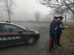 INCIDENTE MORTALE - AUTO PIRATA INVESTE PEDONE: LAUTISTA IN FUGA. TRAGEDIA TRA STUPINIGI E ORBASSANO - immagine 1