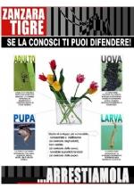 CARMAGNOLA - Il Comune sceglie la linea dura per combattere le zanzare - immagine 1