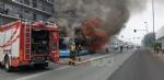 BEINASCO - Prende fuoco un autobus di linea: lautista blocca il mezzo e salva i passeggeri  - FOTO - immagine 2