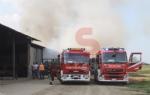 VINOVO - Incendio in unazienda agricola: a fuoco un magazzino di stoccaggio - FOTO - immagine 6