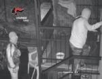 BEINASCO - Furti nelle case: i carabinieri arrestano due ladri - VIDEO - immagine 2