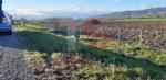 TROFARELLO - Incidente in tangenziale: auto finisce in mezzo al campo - FOTO - immagine 3