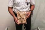 RIVALTA - Torna in Italia con una borsa di varano: fermato dalla guardia di finanza - immagine 3