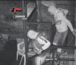 BEINASCO - Furti nelle case: i carabinieri arrestano due ladri - VIDEO - immagine 3