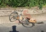 CARMAGNOLA - Camion investe una ciclista: trasportata durgenza al Cto è gravissima - FOTO - immagine 4