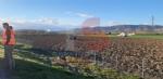 TROFARELLO - Incidente in tangenziale: auto finisce in mezzo al campo - FOTO - immagine 4