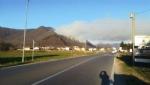 SANGANO - Incendio sul monte San Giorgio sotto la punta Pietraborga - immagine 4