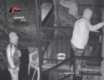 BEINASCO - Furti nelle case: i carabinieri arrestano due ladri - VIDEO - immagine 4