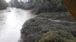 MALTEMPO - Allerta arancione: il Sangone sotto controllo a Nichelino - FOTO - immagine 5