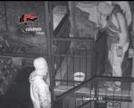 BEINASCO - Furti nelle case: i carabinieri arrestano due ladri - VIDEO - immagine 5