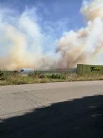 BEINASCO - Incendio di rifiuti e sterpaglie vicino alla tangenziale - LE FOTO - - immagine 1