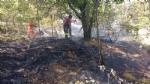 PIOSSASCO - Nuovo incendio sul monte San Giorgio. Vigili del fuoco e squadra Aib in azione - immagine 4