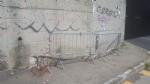 MONCALIERI - Crepe e calcinacci caduti dal ponte della ferrovia, esposto ai carabinieri. - LE FOTO - - immagine 1
