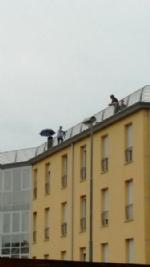 VINOVO - Minaccia di lanciarsi dal tetto della casa di riposo: salvato dai carabinieri - immagine 1