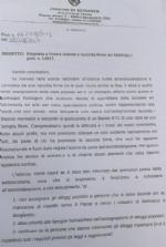 BEINASCO - Il sindaco scrive ai firmatari della petizione anti-rom: «Travisati i fatti» - immagine 1