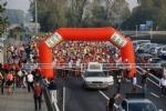 VINOVO - Hipporun fa registrare un successo senza precedenti: 1300 atleti in gara fra Vinovo e Stupinigi - I VINCITORI - immagine 1