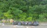 NICHELINO - Ancora abbandoni di rifiuti, in zona industriale Vernea nuova discarica - immagine 1