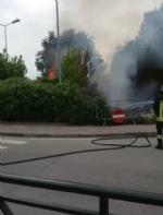 MONCALIERI - A fuoco la rotatoria di Via Bertero davanti le scuole - immagine 1
