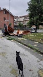 TROMBA DARIA: Gravi danni e disagi sparsi ovunque, ma nessuna vittima. LE FOTO DEL DISASTRO - immagine 14