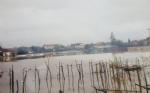 MONCALIERI - La protesta di un casolare a Tetti Piatti: «Raggirati ed alluvionati» - immagine 4