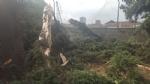 NICHELINO - Un fulmine distrugge albero e recinzione in via Stupinigi - LE FOTO - - immagine 1