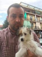 NICHELINO - Vergogna in via Bengasi: cagnolina rinchiusa e abbandonata nellarea cani - immagine 1