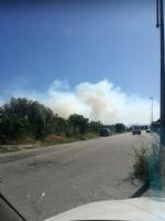 BEINASCO - Incendio di rifiuti e sterpaglie vicino alla tangenziale - LE FOTO - - immagine 2