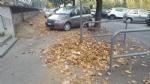 MONCALIERI - Troppi rifiuti in corso Trieste e spunta un cartello: «Sporcate per sentirvi a casa» - immagine 3