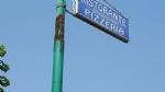 BEINASCO - Un altro sciame dapi a Beinasco: transennato il marciapiede di fronte al Market Ld - immagine 2