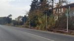 MONCALIERI - Orti abusivi tossici a Tetti Piatti, Atc li sigilla - LE FOTO - - immagine 2