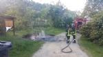 VINOVO - Raid vandalico sulle sponde del Chisola: incendiati due cassonetti - immagine 2