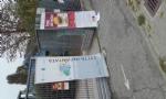 NICHELINO - Grande successo per la festa dei Lettori - FOTO E VIDEO - - immagine 3