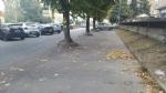 MONCALIERI - Troppi rifiuti in corso Trieste e spunta un cartello: «Sporcate per sentirvi a casa» - immagine 4