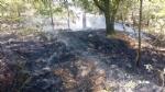 PIOSSASCO - Nuovo incendio sul monte San Giorgio. Vigili del fuoco e squadra Aib in azione - immagine 6