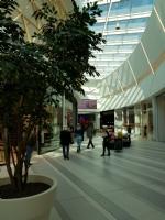"""NICHELINO - Inaugurata """"I Viali"""" la galleria commerciale vicino Carrefour - LE FOTO - - immagine 3"""