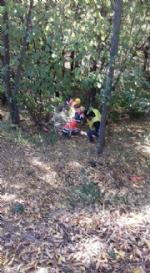 NICHELINO - Maxi discarica abusiva ripulita lungo la pista ciclabile del Sangone - LE FOTO - - immagine 6