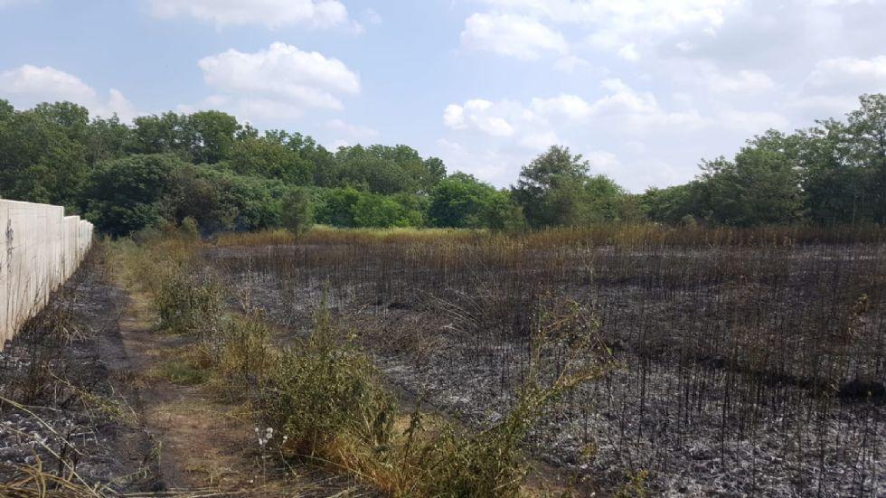 TROFARELLO - Brucia un campo di sterpaglie vicino al cimitero