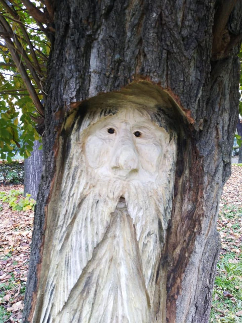 ORBASSANO - Gli alberi abbattuti diventano sculture di folletti e gnomi