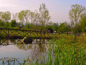 ORBASSANO - Nasce l'Oasi Sangone; parco avventura, area fitness e orti urbani