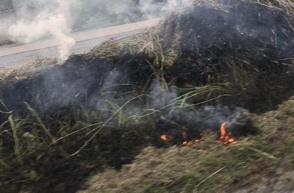 CARMAGNOLA - Prendono fuoco le sterpaglie lungo la ferrovia: paura in serata