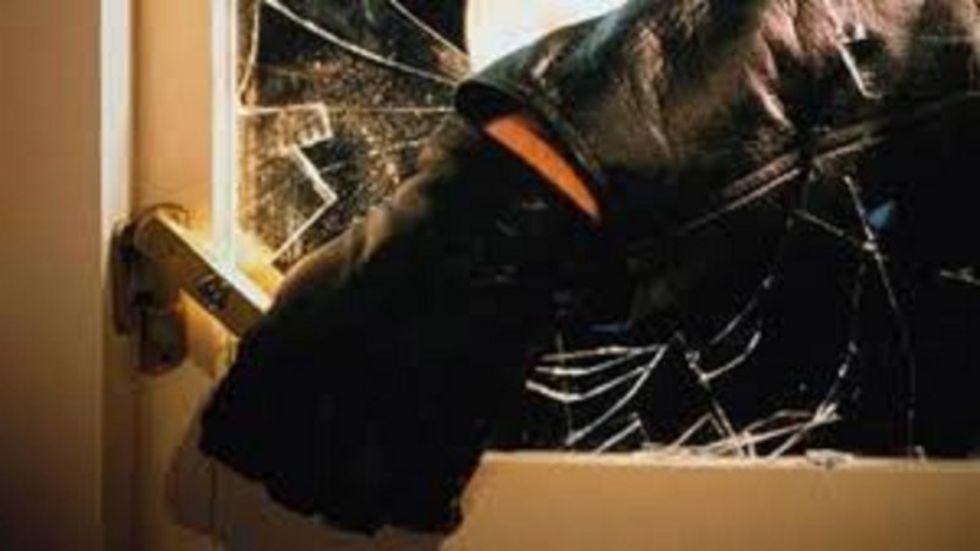 NICHELINO - Ladri in azione nella notte: colpito un negozio di fiori