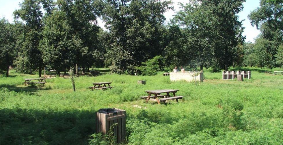 NICHELINO - Riapre lo spazio barbecue al parco Boschetto