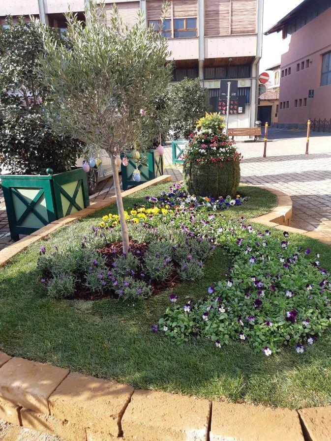CARMAGNOLA - Le aiuole fiorite in città per l'evento vivaistico cancellato dal Covid