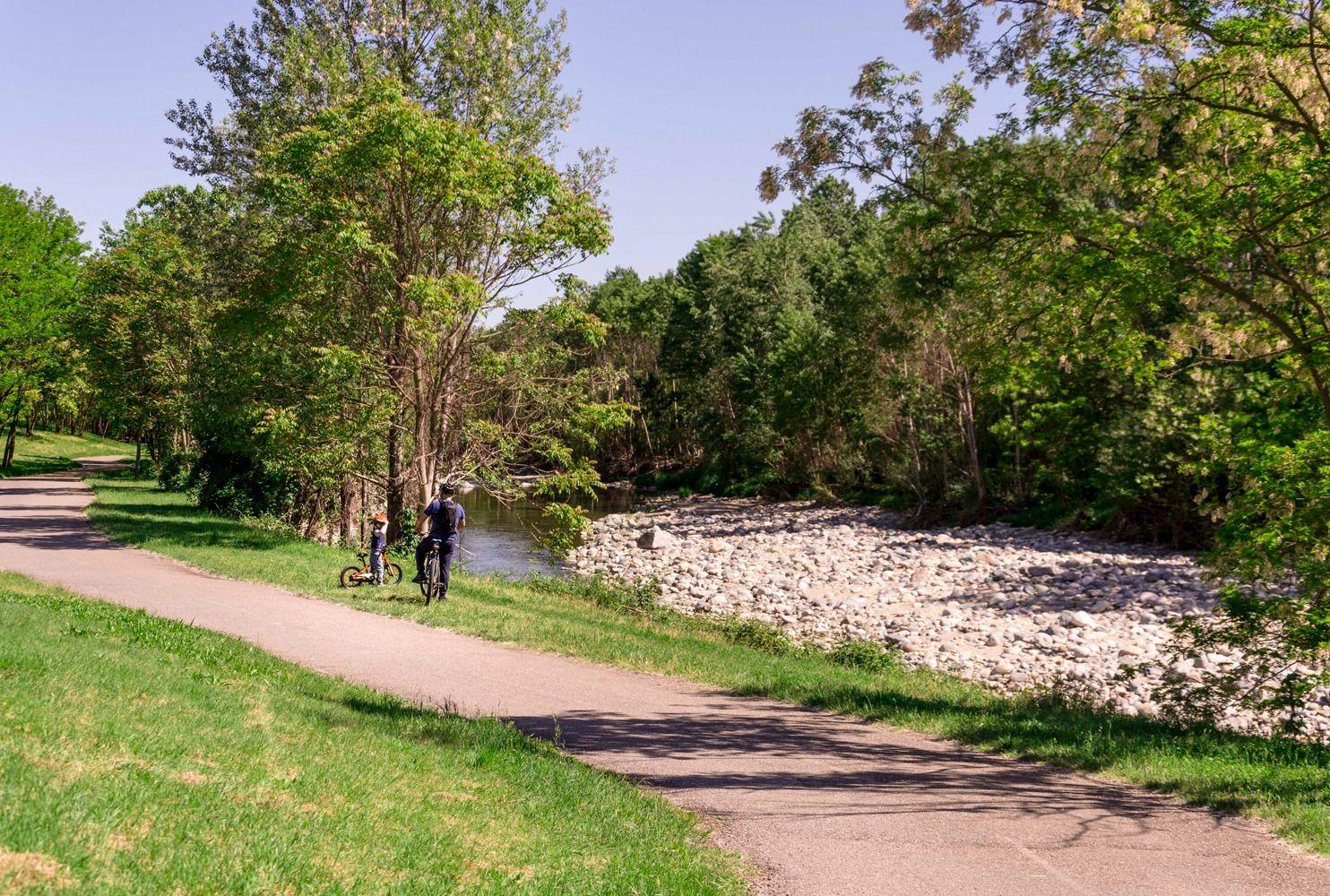 RIVALTA - Il Parco del Sangone ancora più verde con 2500 alberi e arbusti